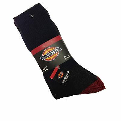 thick winter socks 5 pack use cushion